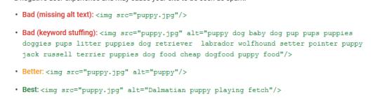 Google Image Alt text Guideline